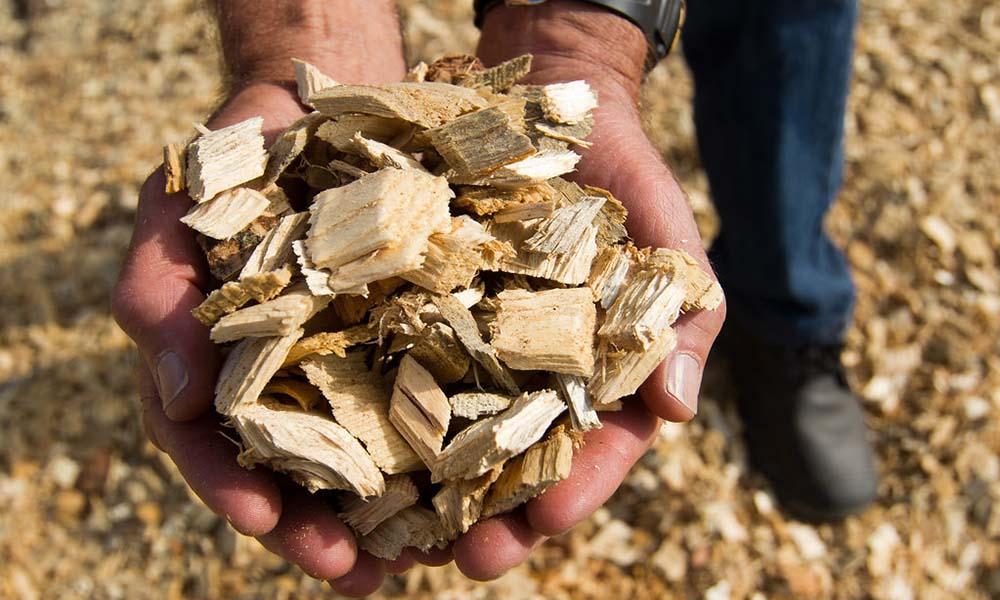 Tuinders in Vierpolders willen biomassacentrale voor bijstook aardwarmtenet