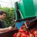 Stigas ontwikkelt kosten/batenindicator Gezond en Vitaal Werken