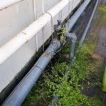 Gerichte actie beperkt lozingen tuinbouw Bleiswijk
