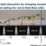 'We kunnen straks met efficiënte belichting energieverbruik halveren'