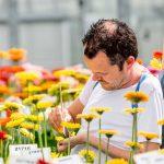 HilverdaKooij en Florist Holland gaan samen verder