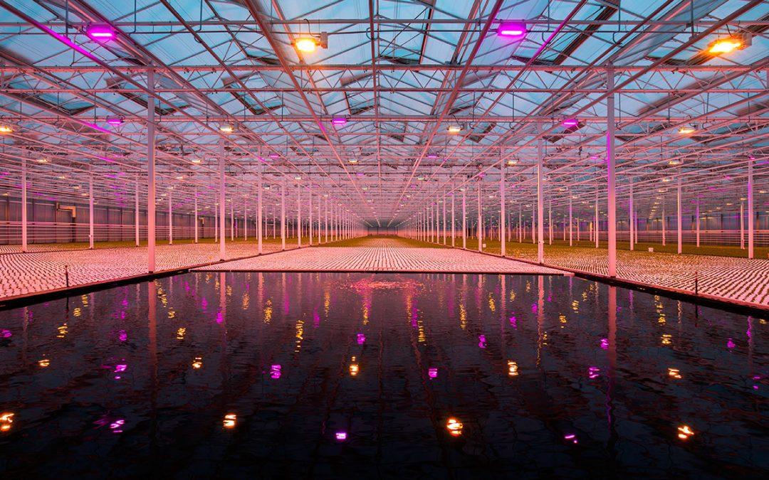 Nog geen duidelijkheid over extra subsidie voor LED-installaties