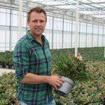 Meer wortels, betere groei en verhoogde weerstand tegen stress
