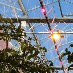 Meeste glastuinbouwbedrijven gaan 180% meer toeslag betalen