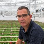 Micro-organismen beter laten aanslaan in opkweek komkommer