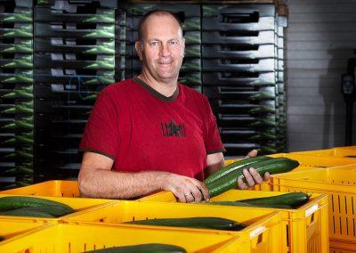 Komkommerteler De Hoog: 'Verdamping als indicator watergift'
