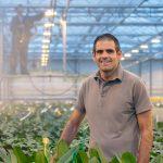 'Ook teler meerjarige sierteeltgewassen wil schone kas'