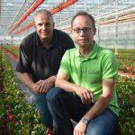 Paletti Growers sluit partnerschap met HAS Hogeschool Venlo