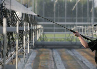 Kans op wegval middelen als biociden gewasbeschermingsmiddelen worden