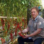 """""""Tien jaar geleden al gaan bouwen aan afzet niche-tomaten"""""""