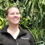'Houtvezel: een mooie veenvervanger in tal van gewassen'