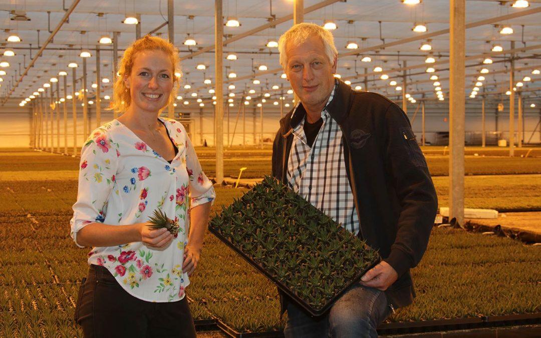 Gerard van Langen van Amigo Plant: 'Denken in oplossingen is ondernemen'