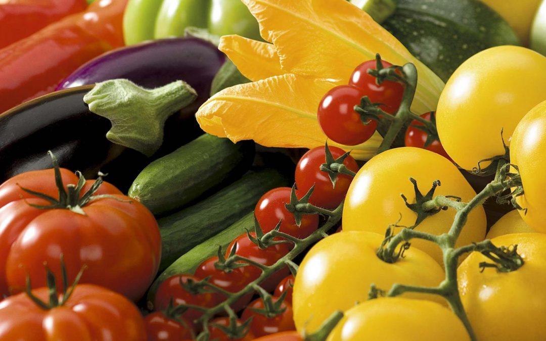 Initiatiefnemers SamenSterk willen tuinbouwsector weer gezond maken
