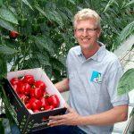 Jonge generatie Belgen gelooft in tuinbouw in Nederland