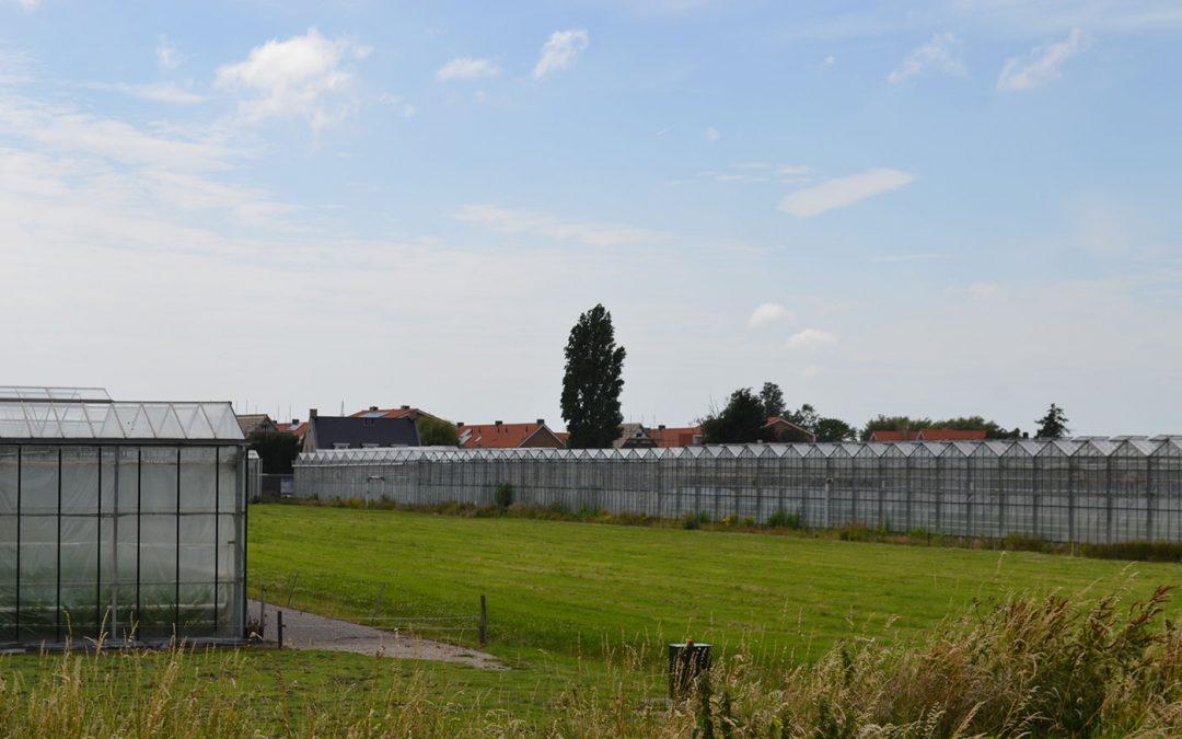 'Gemeente Pijnacker-Nootdorp zet glastuinbouwgebied op slot'