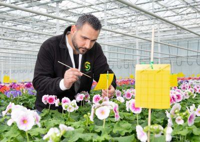 Biologisch werken geeft zuiverder beeld planteigenschappen