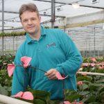 Minder plantstress door aandacht voor energie- en vochtbalans