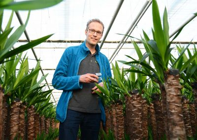 Nieuw siliconenmiddel vangt schadelijke insecten in dodelijk net