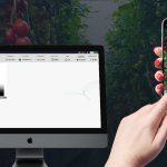 Digitaal excursie lopen is goed alternatief voor bedrijfsbezoek