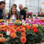 Coronavirus: GreenTech verplaatst, FlowerTrials geannuleerd