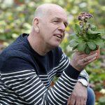 Zonder groeiremmers compacte planten telen
