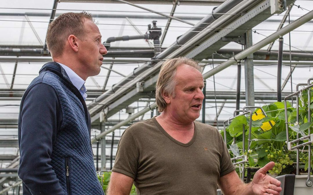 Strategisch partnerschap Fragaria Innova en Koppert