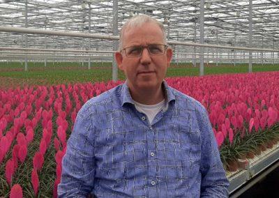 'Tuinbouw moet harder zoeken naar betrouwbare externe CO2'