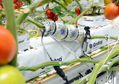 'Met data gedreven telen willen we de plant laten praten'