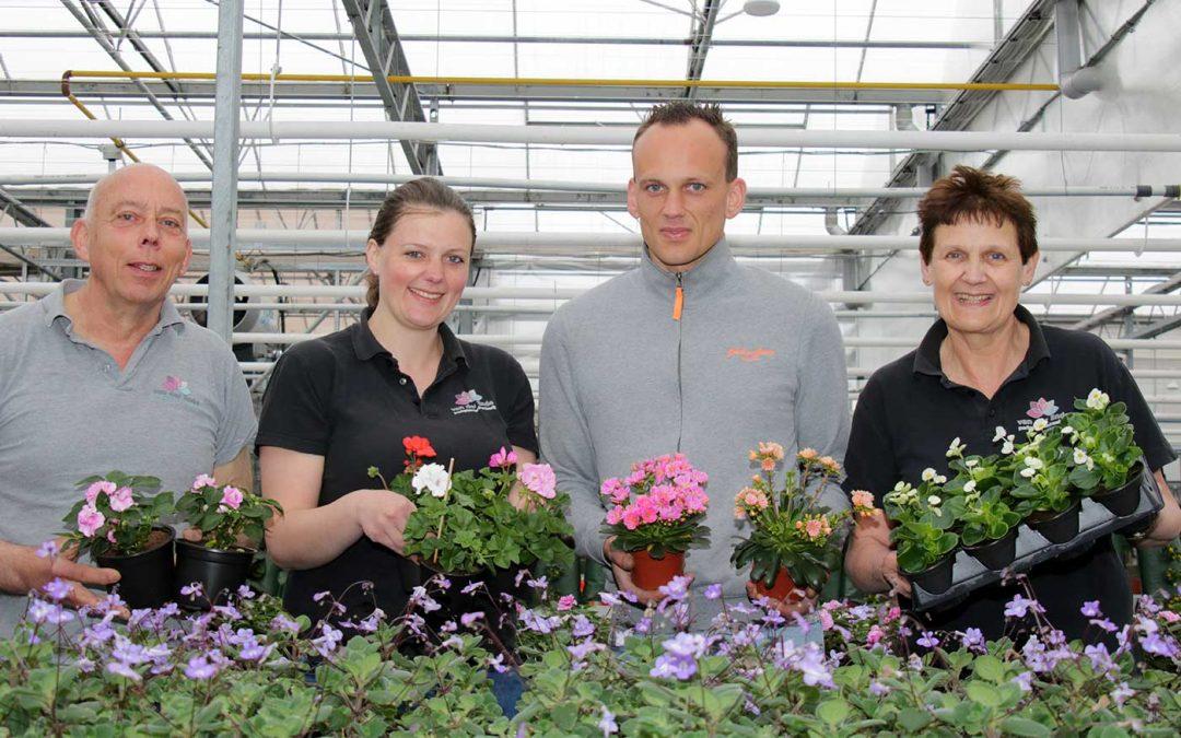 Kwekerij verandert elk voorjaar in kleurrijk mini-tuincentrum