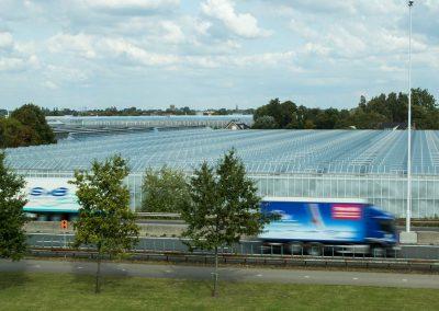 Tuinbouw goed voor bijna 3 procent Nederlandse economie