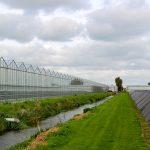 WUR ontwikkelt handzame en betaalbare nitraatmeter