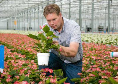 Minder kunstmest en beter bodemleven voor mooiere planten