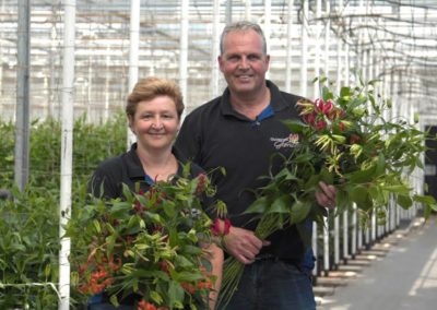 'Focus op risicospreiding werpt vruchten af in coronatijd'