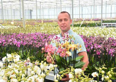 Artisan Orchids is creatief met orchideeën en met marketing