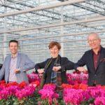 Beekenkamp Plants neemt belang in Schoneveld Breeding
