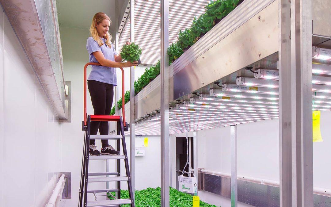 'Vertical Farming is heel nuttig als onderzoekstool'