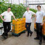 Goede ervaring breedspectrum LED's bij komkommerteler Vahl