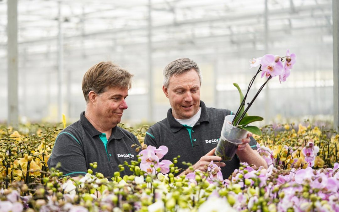 Decorum verwelkomt nieuw lid Bernhard Orchids