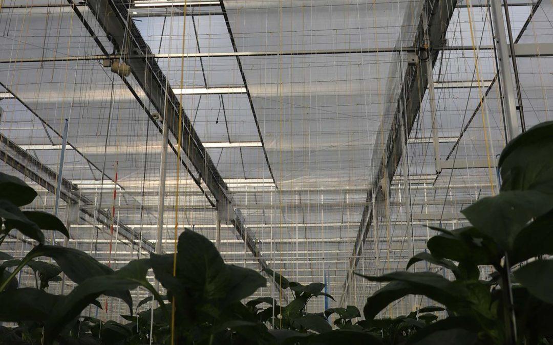 Energie-balancerend schermen levert hoge energiebesparing op