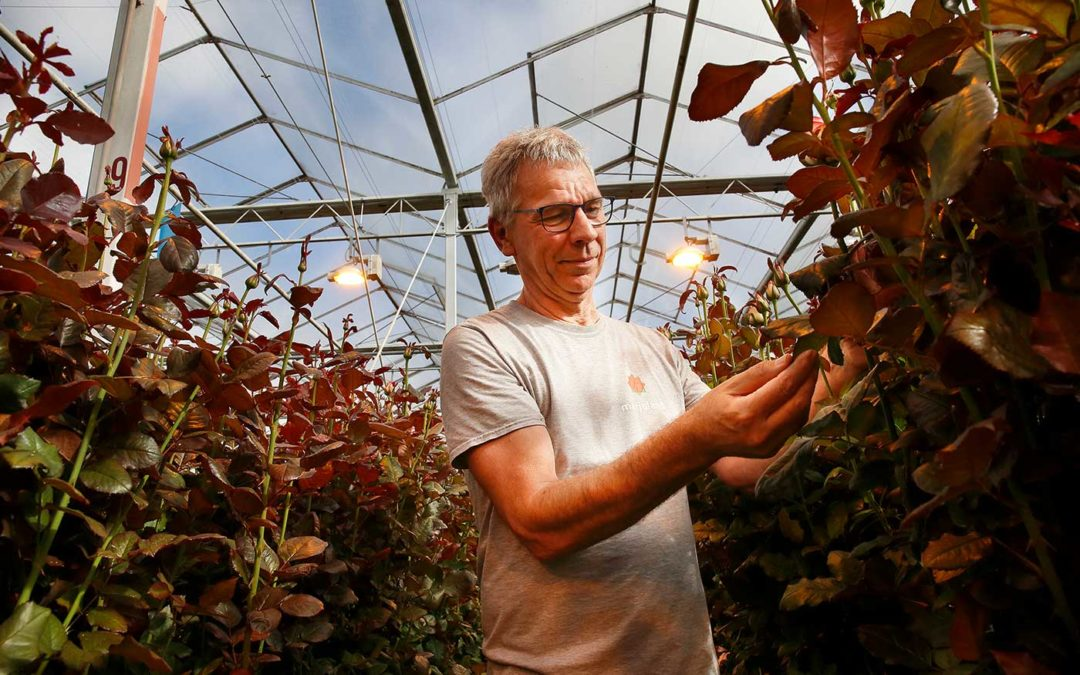 'Meer groei door inzet groene middelen'