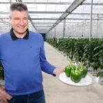 'Direct al voldoende kilo's en een goede marge'
