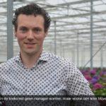 Martijn Sijben startte vanuit het niets eigen hortensiakwekerij