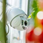 De potentie van sensoren voor de glastuinbouw