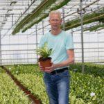 'Maximale groei uit een plant halen en stress voorkomen'