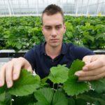 'Zachtfruitsector helpen om voorop te blijven lopen'