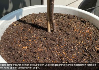 'Besteed aandacht aan juiste pH bij potgrondteelten'