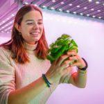 Nieuwe onderzoeksfaciliteiten helpen vertical farming vooruit