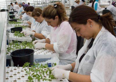 Voedselproductie moet verdubbelen, daarom nu actie nodig