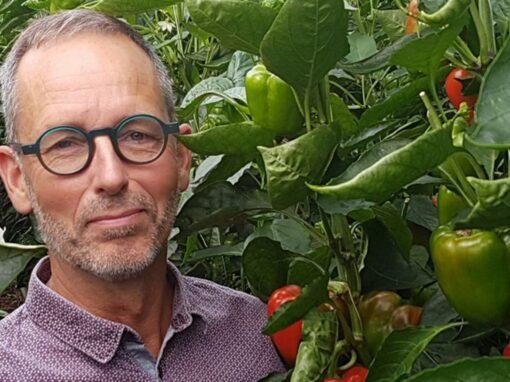 'Verstandig besparen op energie in paprika door juiste keuzes'
